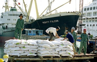 Phan-bon-nhap-khau-maika-logistics