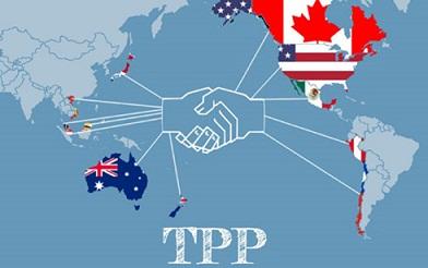 TPP-maikalogistics
