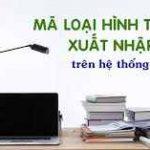 chuyen-doi-loai-hinh-nk-phai-chinh-ca-thoi-han-nop-thue