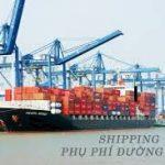 cv-1237tchq-gsql-phai-cong-phi-cic-do-va-ve-sinh-container-vao-tri-gia-hai-quan